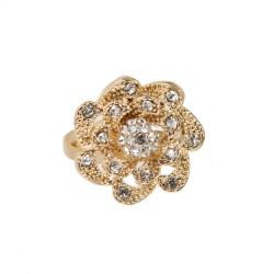 Ring Ranunculus - Gold